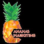 Ananas Marketing
